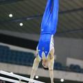 第67回全日本体操競技種目別選手権大会/男子決勝スタートリスト