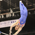2014体操ワールドカップ東京大会/PURVIS Daniel(GBR)