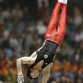第54回NHK杯体操(男子試技順②)