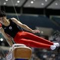 第69回全日本体操種目別選手権大会予選結果(男子)