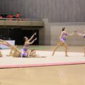 第17回全日本クラブ団体選手権(AGGシニア)優勝/日本女子体育大学