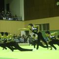 全日本ジュニア直前企画①「試技順1番、侮れず!」~えびの市立上江小中学校